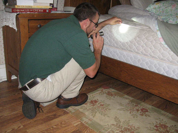 Bed Bugs Part 2 - Inspection (1 credit)