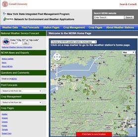 NEWA-Homepages1.jpg